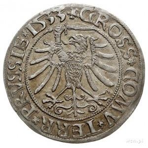 grosz pruski 1533, Toruń, PN.13-Dut.89, ładnie zachowan...