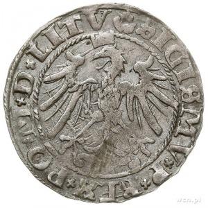 grosz na stopę litewską 1536, Wilno, odmiana z literą I...