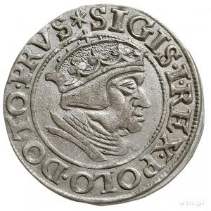 grosz 1538, Gdańsk, PN.13-Dut.182, ładny