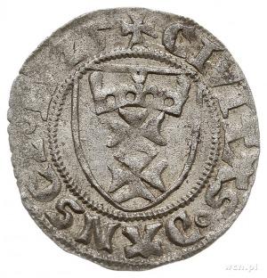 szeląg 1525, Gdańsk, T. 2, rzadki