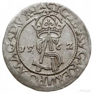 trojak 1562, Wilno, Pogoń w ozdobnej tarczy i prążki na...