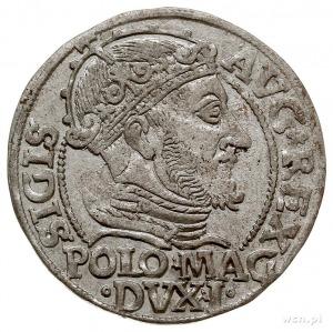 grosz na stopę polską 1547, Wilno, Ivanauskas 5SA7-4, ł...