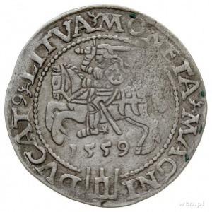 grosz na stopę litewską 1559, Wilno, Ivanauskas 6SA28-8...