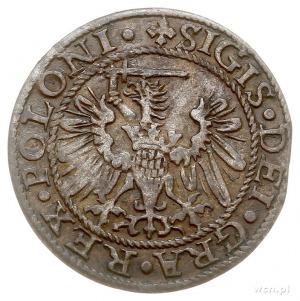 szeląg 1573, Gdańsk, H.Cz.789 (R4), T. 18, bardzo rzadk...