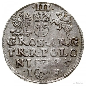 trojak 1595, Olkusz, Iger O.95.1.c (R1)