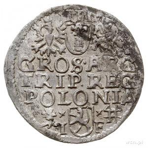 trojak 1595, Wschowa, Iger W.95.5.c (R), ale końcówka d...