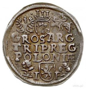 trojak 1596, Wschowa, Iger W.96.1.c, patyna