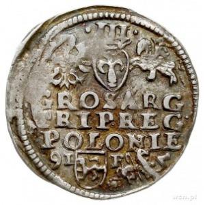 trojak 1595, Lublin, rozetka z prawej strony herbu Lewa...