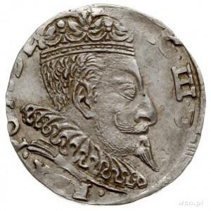 trojak 1596, Wilno, herb podskarbiego pomiędzy gałązkam...