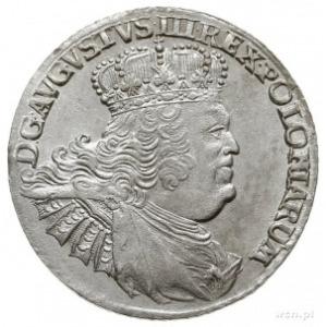 ort 1756, Lipsk, Kahnt 689.c -masywne popiersie, obie k...