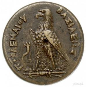 Egipt, Ptolemeusz III Euergetes 246-221 pne, brąz AE-31...