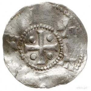 Tiel, Henryk II 1002-1024, denar, Aw: Głowa na wprost, ...