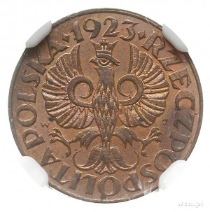 1 grosz 1923, Kings Norton, Parchimowicz 101.a, moneta ...
