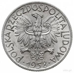5 złotych 1958, Warszawa, Rybak, wąska cyfra 8, Parchim...