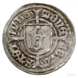 wit 1505, Szczecin, Aw: Gryf w lewo, Rw: Gotycka litera...