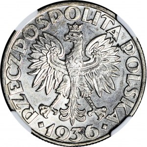 5 złotych 1936 Żaglowiec, menniczy