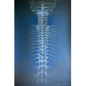 Paulina Ortenburger, I miss your columna vertebralis