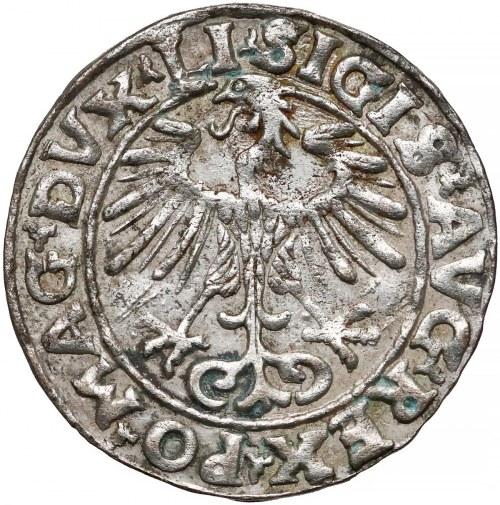 Zygmunt II August, Półgrosz Wilno 1553 - mała data