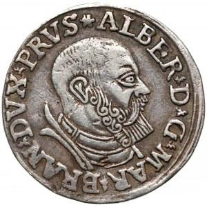 Prusy, Albrecht Hohenzollern, Trojak Królewiec 1537