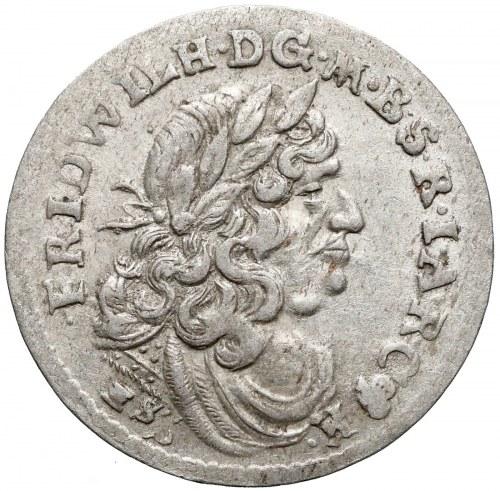Prusy-Brandenburgia, Fryderyk Wilhelm, Szóstak Królewiec 1681 HS