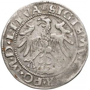Zygmunt I Stary, Grosz Wilno 1536 - luty - litera F - wczesny Orzeł