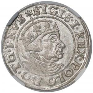 Zygmunt I Stary, Grosz Gdańsk 1539 - NGC MS61
