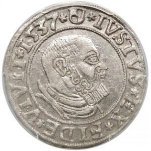 Prusy, Albrecht Hohenzollern, Grosz Królewiec 1537 - PCGS AU58