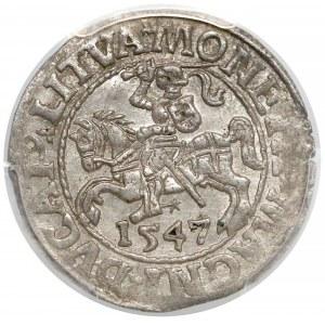 Zygmunt II August, Półgrosz Wilno 1547 - PCGS MS62