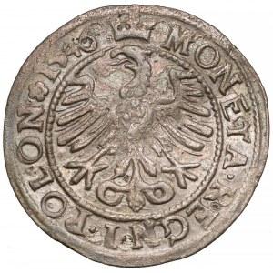 Zygmunt I Stary, Grosz Kraków 1546 ST - rozety po bokach