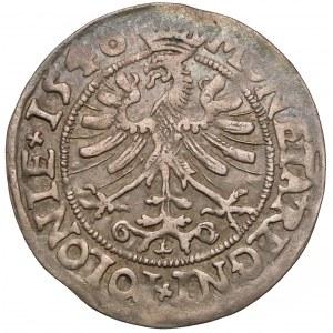 Zygmunt I Stary, Grosz Kraków 1546 - listki