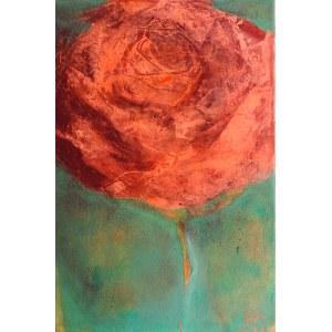 Halszka Maj, Rose