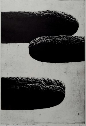 Tomasz Winiarski (Ur. 1982), Z cyklu Perpetuum Mobile XXXIV, 2011