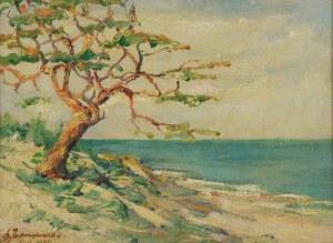 Leopold JARMUSZEWSKI, XIX/XX w., Pejzaż nadmorski z drzewem