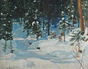 Jan BERGER (1863-1930), Zimowy las