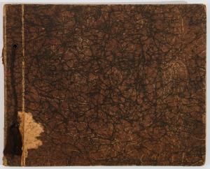 ALBUM ZE ZDJĘCIAMI STABROWSKICH I JANISZEWSKICH, 23 x 28,5 cm, brązowa okładka marmurkowa,wiązany sznurkiem
