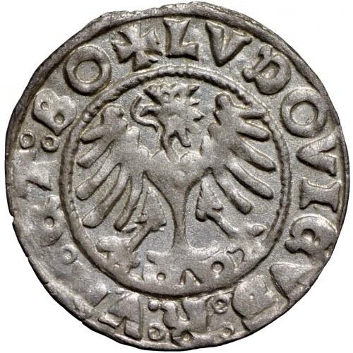 Śląsk, Ludwik, Półgrosz 1523 Świdnica - odwrócona 2