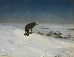 Wierusz-Kowalski Alfred, WILK W ZIMOWĄ NOC, PO 1900