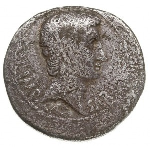 cystofor suberatus, Pergamon, 27/26 pne, Aw: Głowa w pr...