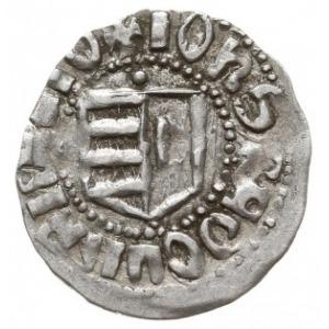 dinar (półgrosz), Aw: Tarcza herbowa, IOhS RADOLVS LAOI...