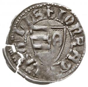 dinar (półgrosz), Aw: Tarcza herbowa, w prawym jej polu...