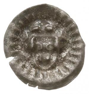 Gryfia, brakteat XIV w., Głowa w koronie na wprost, pro...
