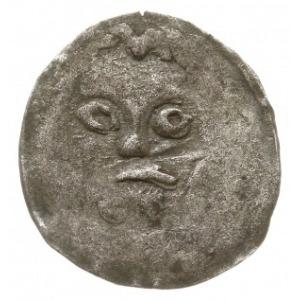 Koszalin, denar XV w., Aw: Głowa na wprost, Rw: Odwróco...