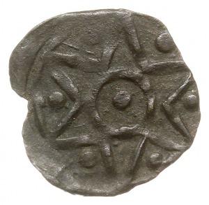 Stargard, denar XV w., Aw: Gwiazda sześcioramienna w kó...