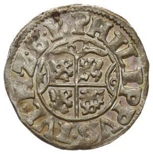 podwójny szeląg 1619, Nowopole (Franzburg), Hildisch 21...