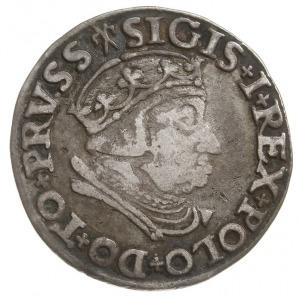 trojak 1538, Gdańsk, korona królewska bez krzyża, Iger ...