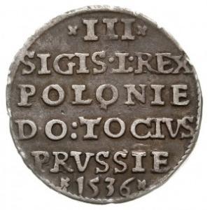 trojak 1536, Elbląg, odmiana z ligaturą NK w wyrazie EL...