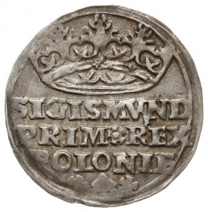 grosz 1528, Kraków, PN.13-Dut.8, delikatna patyna, ładn...