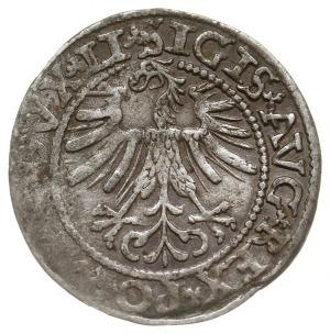 półgrosz 1562, Wilno, odmiana z odwróconym herbem Topór...