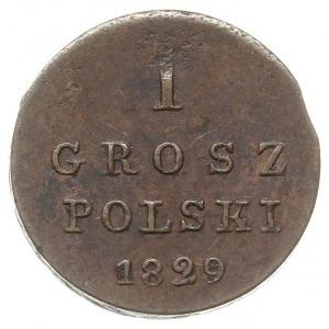 1 grosz polski 1829, Warszawa, Plage 222, Bitkin 1057, ...