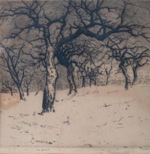 Jan Rubczak (1884 Stanisławów - 1942 Auschwitz) - Bezlistne drzewa w sadzie